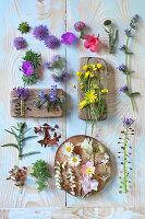 Tableau of flowers