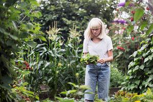 Teenage girl in garden harvesting