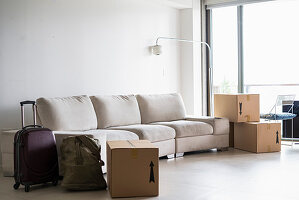 Pale sofa, moving boxes and suitcase in living room