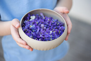 A bowl of violet flowers