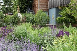Herb bed in garden
