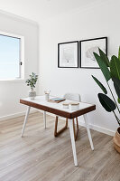 Desk and houseplant in bright study