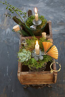 Original arrangement in an antique wooden box with succulents, moss and test tube