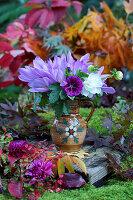 Mallow, autumn crocus and dahlias in jug