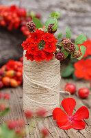 Verbena flowers in reel of twine