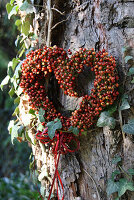 Heart made of tiny rose hips on a tree trunk