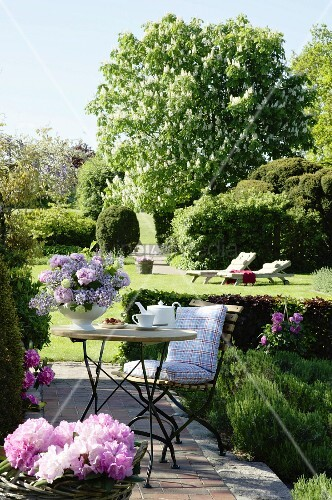Seating area in garden with summer flowers; flowering horse chestnut tree in background