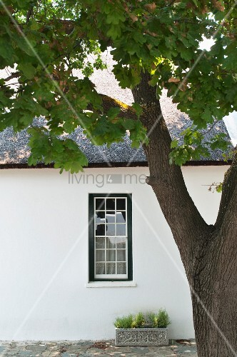 View of simple house facade