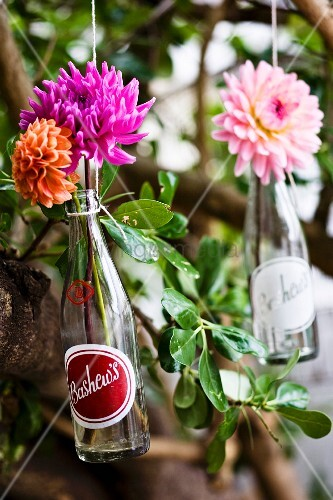 Original bottle decorations for a summer party