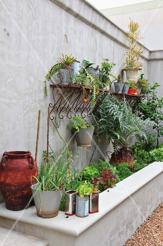 Plants growing in various pots above a raised concrete planter box