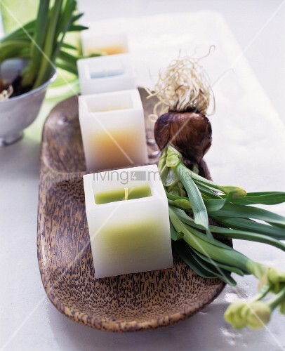 Square candles and flower bulbs on a wooden tray