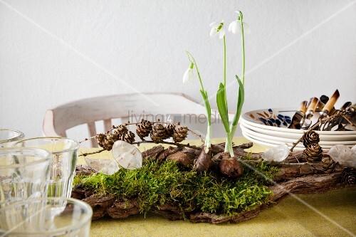 Tischdeko: Auf Holzfragment Drei Schneeglöckchen, Moos