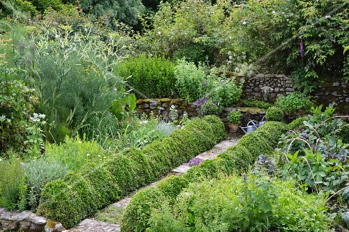 Garden path bordered by topiary box hedges leading to stone fountain