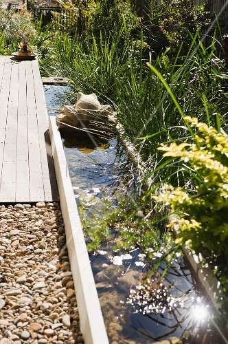 Ornamental grasses along a water feature with concrete frog, wooden terrace and pebble bed in a sunny garden