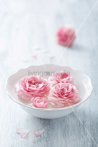 Pink ranunculus flowers in a white bowl
