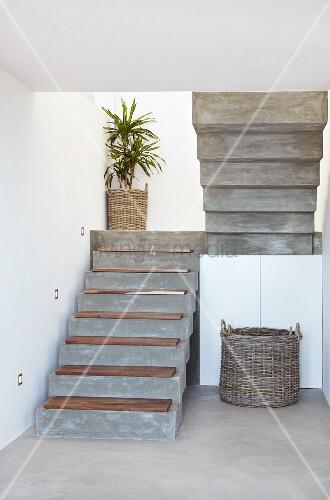 beton treppe mit holz trittstufen und palme im topf auf treppenpodest bild kaufen living4media. Black Bedroom Furniture Sets. Home Design Ideas
