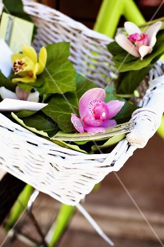 Orchideen in einem Fahrradkorb