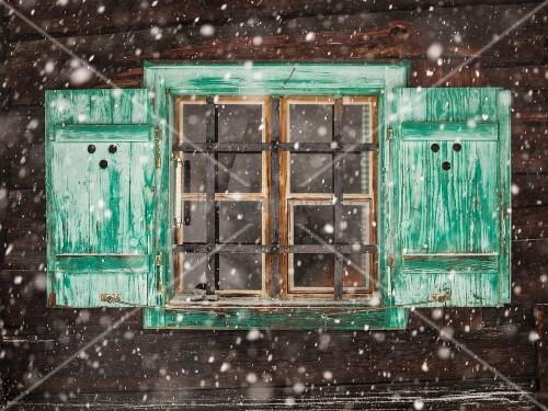 Grün bemalte Fensterläden am Fenster mit Gittern