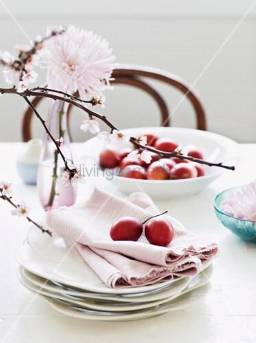 Baumtomaten und rosa Stoffservietten auf Tellerstapel, im Vordergrund blühender Zweig