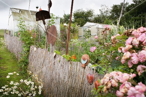 Greenhouses and overgrown summer garden behind bamboo fence with ceramic ornaments and decor made from utensils