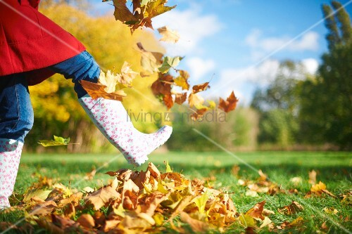 Child playing in bright autumn leaves