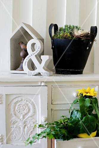Potted plants and vintage ornaments on antique cabinet
