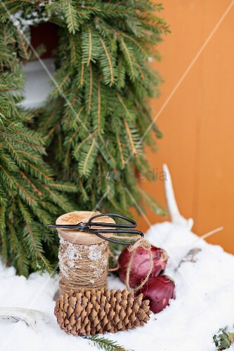 Scissors, twine, pine cones and red onions in snow