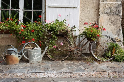 Old bicycle decorated with flowering plants and watering cans on stone flags in front of country house