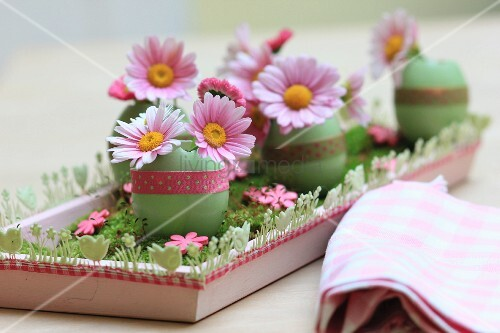 Pink daisies in green-dyed egg shells arranged on wooden tray