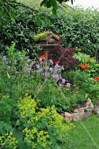 Vogelhäuschen in blühendem Garten