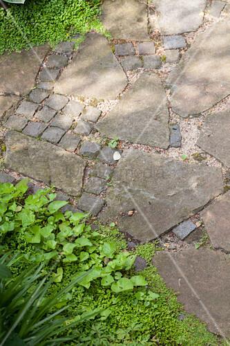 Natursteinplatten und Pflastersteine auf Weg
