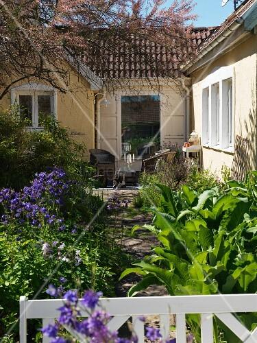 Terrassenplatz mit Korbmöbeln vor Hausfassade mit blühender Akelei im sommerlichen Garten