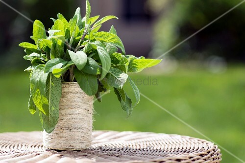 Sage in tin can wrapped in string