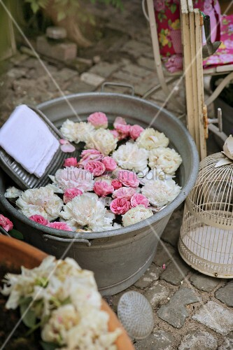 English roses and peonies floating in zinc tub