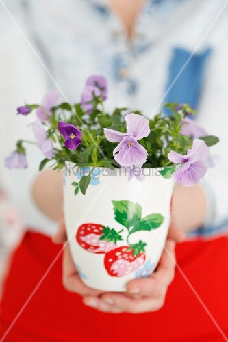 Woman's hands holding viola planted in white, painted mug