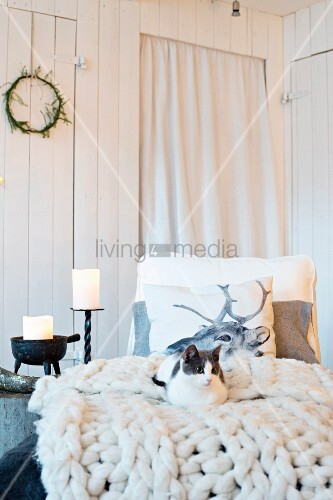 Cat lying on chunky knitted blanket in front of board wall