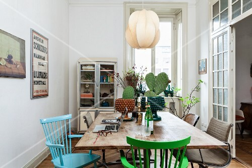Cacti on dining table and coloured wooden chairs below pendant lamp with lampshade made from leaves of veneer