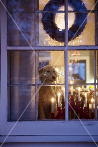 View of candle bridge and dog in festively decorated interior seen through lattice window