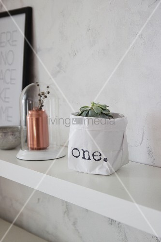 Succulent in hand-made printed paper bag next to copper vase below glass cover