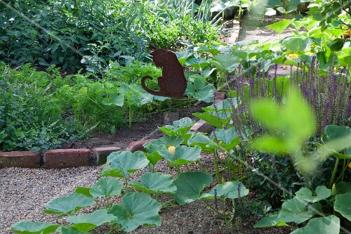 Brick-edged vegetable bed with metal cat-shaped decoration in summery cottage garden