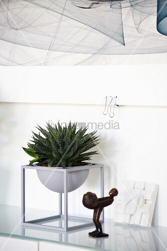 Succulent and bronze figurines on glass table below section of artwork on wall