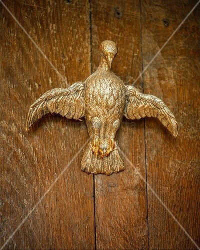 Carved gilt bird on oak background
