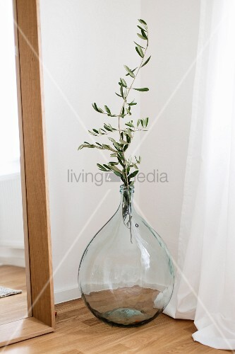 Olive branch in demijohn in corner