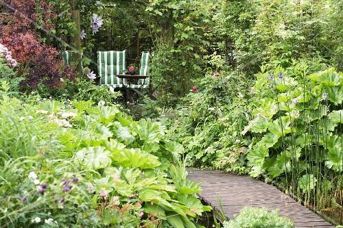 Path leading through lush garden to seating area