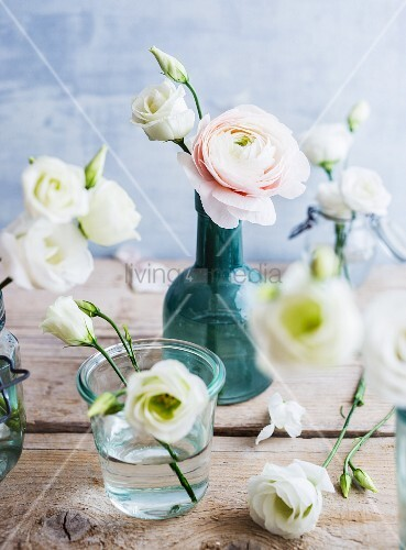White eustomas and ranunculus in various vases