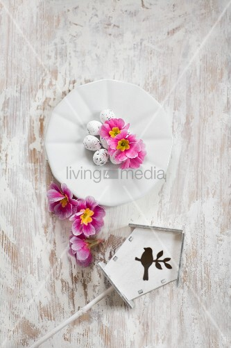 Easter eggs and pink primula flowers on plate next to tiny bird box