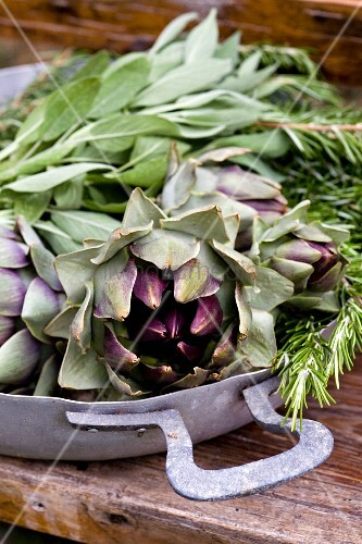Artichokes, sage and rosemary in aluminium, baking dish on rustic garden table