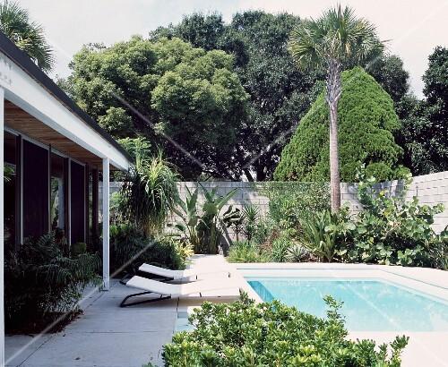liegest hle am pool vor bungalow und exotische pflanzen im. Black Bedroom Furniture Sets. Home Design Ideas