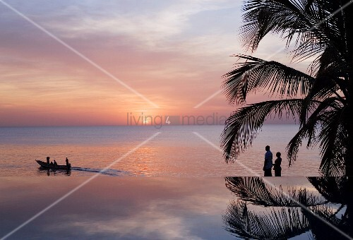 Reflection of palm tree in infinity pool with view of sunset on horizon over sea