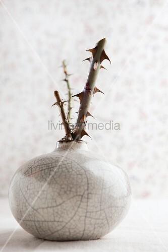 Ceramic vase with pieces of rose stem